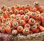 winterwortels in een mand bewaren