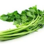 selderij groen
