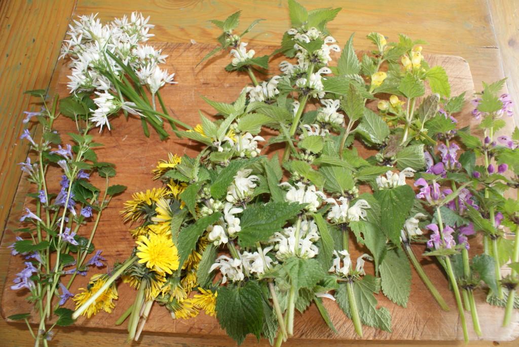 eetbare bloemen lente 2