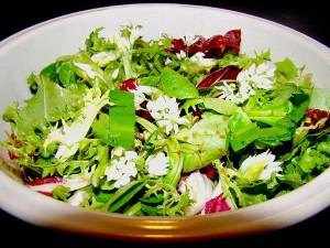 wildpluk salade
