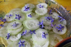 komkommerslade met boragebloemen