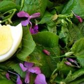 sla met linde blad en viooltjes