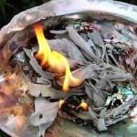 brandende salieblaadjes