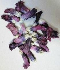 gedroogde stokroosbloemen