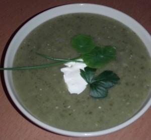 wilde groente soep