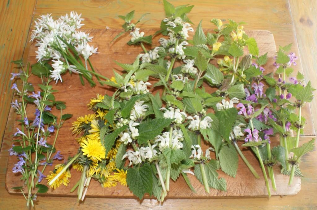 eetbare bloemen lente 1