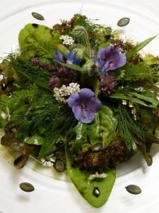 wilde salade met berkenblad