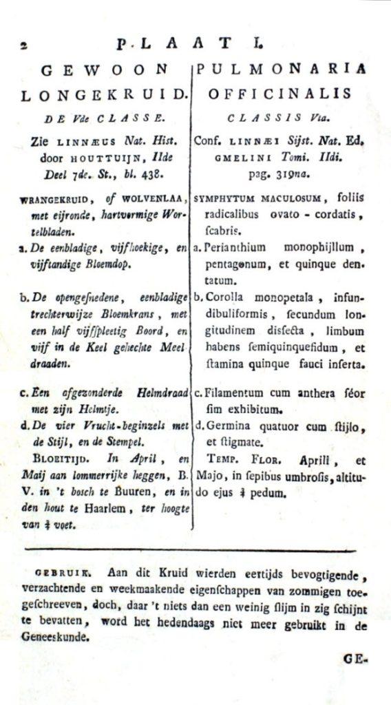 gevlekt longkruid oude tekst