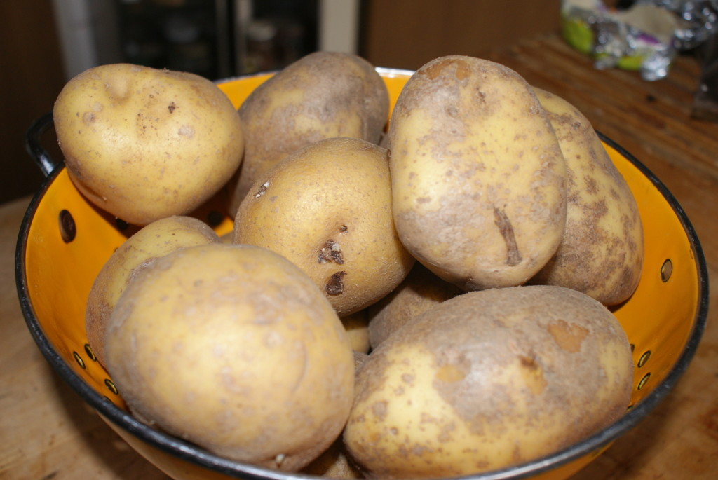 Eigenheimers: echte kruimige aardappels