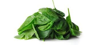 Kleinbladige spinazie